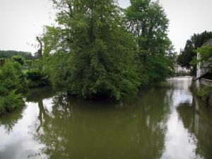 Indre valley - The River Indre and trees along the water
