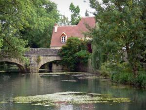 Issoudun - Bridge spanning the river and trees along the water