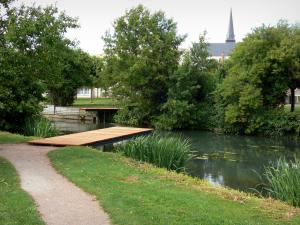 Issoudun - François Mitterrand park: walk along the river, trees lining of the water; tower of the Saint-Cyr church in the background