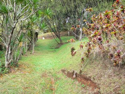 El jard n acu tico de blonzac gu a turismo y vacaciones for Jardin acuatico