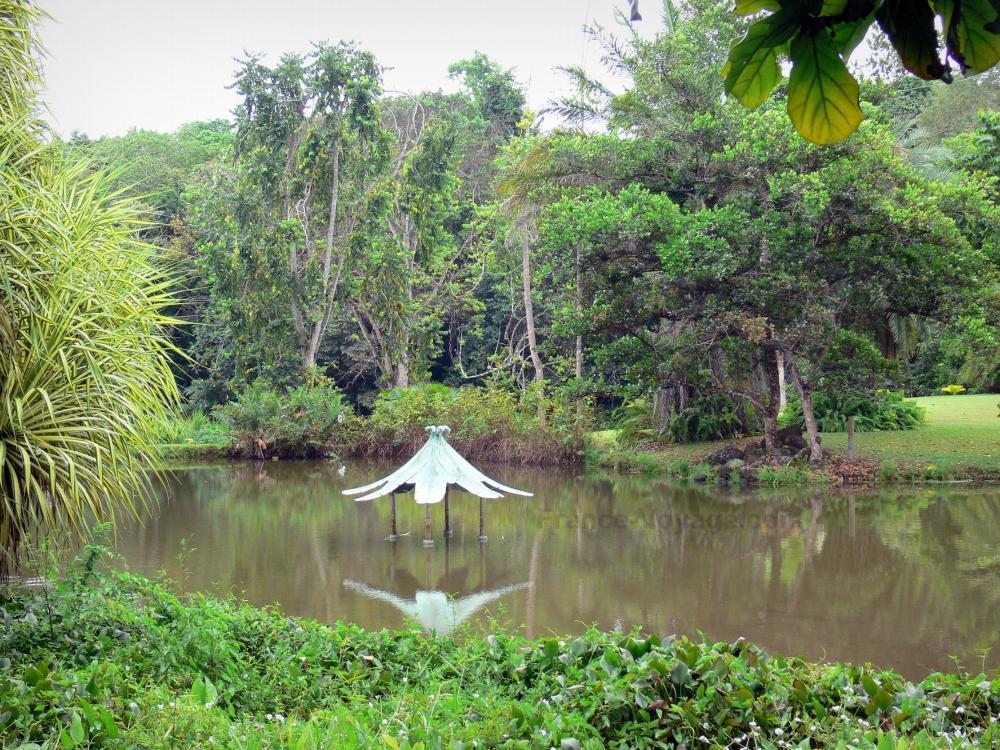 Fotos el jard n acu tico de blonzac gu a turismo y for Jardin acuatico