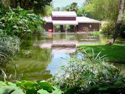 El jard n bot nico de deshaies gu a turismo y vacaciones for Jardin botanico cursos
