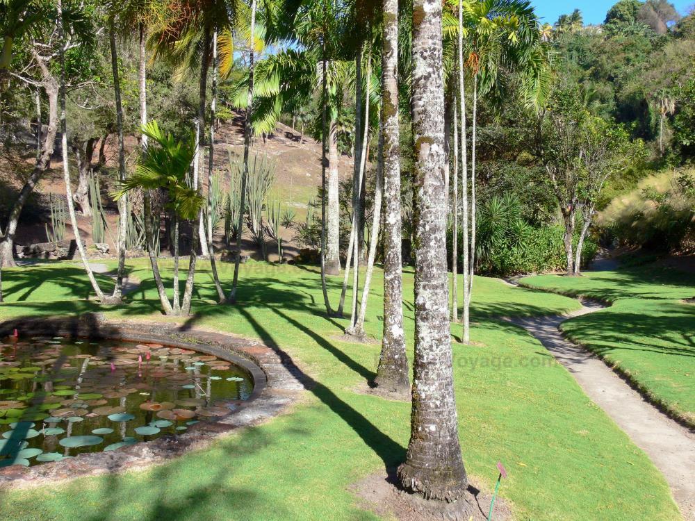 Jardin Botanique Du Carbet   Habitation Latouche   Ornamental Garden Lake  Captain Latouche