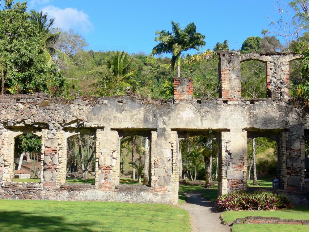 Photos jardin botanique du carbet habitation latouche for Jardin meaning