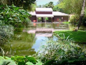 Le Jardin Botanique De Deshaies Guide Tourisme Vacances