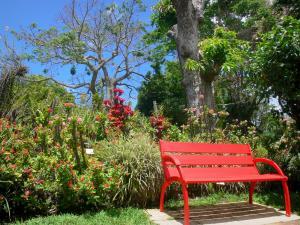 Jardin Botanique De Deshaies 42 Images De Qualite En Haute Definition
