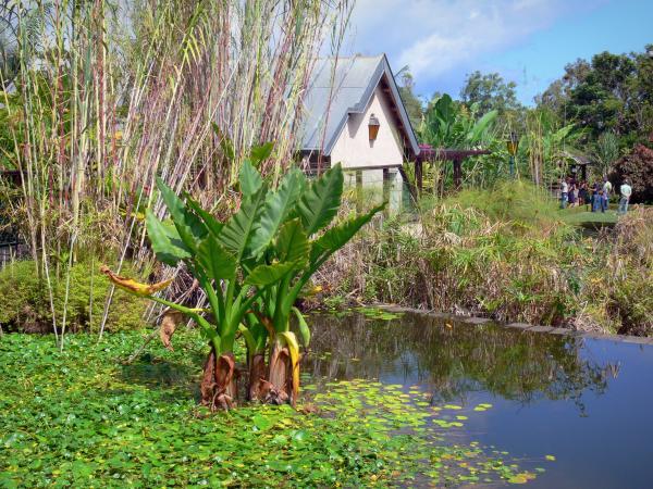 Le jardin botanique de la r union guide tourisme vacances for Restaurant jardin botanique