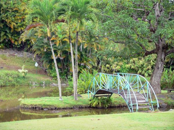 Le jardin d 39 eau de blonzac guide tourisme vacances - Jardin botanique guadeloupe basse terre ...