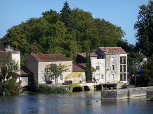 Jarnac - Houses on the edge of the Charente river and trees