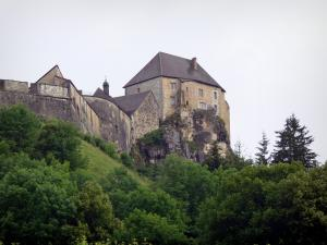 Joux castle - Fortress (fort) home to the Old Weapons museum and trees, in Cluse-et-Mijoux