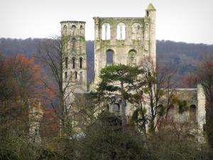 Jumièges abbey - Ruins of the Notre-Dame church, trees and forest in background, in the Norman Seine River Meanders Regional Nature Park