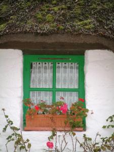 Kerhinet - Green window of a white house with a thatched roof (thatched cottage) decorated with flowers in the Brière Regional Nature Park