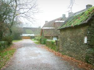 Kerhinet - Narrow street, trees and houses with thatched roofs (thatched cottages) of the village in the Brière Regional Nature Park