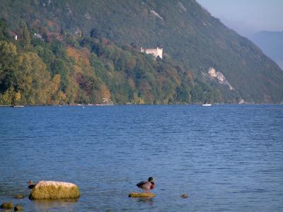 Le Lac Du Bourget Guide Tourisme Amp Vacances