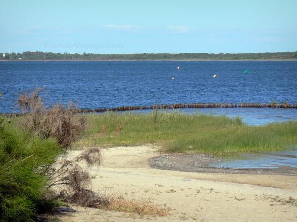 Le lac d 39 hourtin carcans guide tourisme vacances - Office du tourisme carcans ...