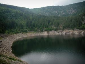 Lac Noir (Black lake) - In a glacial cirque, the lake surrounded by trees (forest)