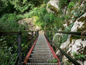 Ladders of Death - Iron ladder, cliff, shrubs and hiking trail; in the Doubs gorges