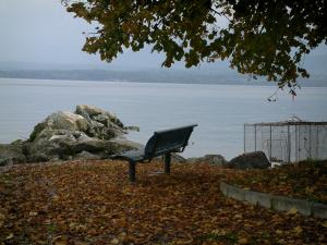 Lake Geneva - Branches of a tree, dead leaves, bench, fishing material, cliffs and lake