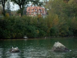 Lake Geneva - Lake, gulls on cliffs and residence surrounded by trees