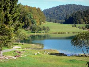 Landscapes of the Ain - Genin lake surrounded by meadows and trees; in Upper Bugey