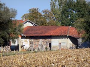 Landscapes of the Ain - Savoyard Bresse: Bressan farmhouse and field