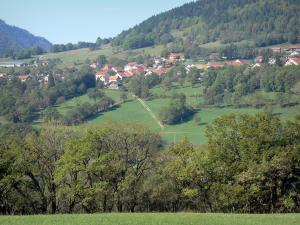 Landscapes of the Ain - Upper Jura Regional Nature Park (Jura mountain range): houses surrounded by meadows and trees