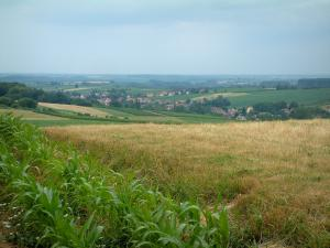 Landscapes of Alsace - Corn field and grassland, houses of a village, trees and fields in background