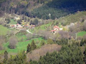Landscapes of the Ardèche - Houses on a small road in a wooded setting