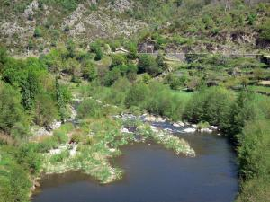 Landscapes of the Ardèche - Eyrieux valley: trees along River Eyrieux