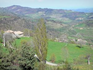 Landscapes of the Ardèche - House overlooking the green hills
