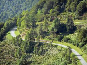 Landscapes of Ariège - Mountain road lined with trees; in the Ariège Pyrenees Regional Nature Park