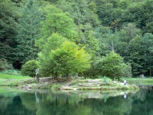 Landscapes of Ariège - Bethmale lake and its bank planted by trees; in the Ariège Pyrenees Regional Nature Park, in Le Couserans area, in the Bethmale valley