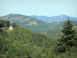 Landscapes of Ariège - Hills covered with trees and meadows