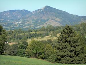 Landscapes of Ariège - Hills covered with trees, meadows and fields