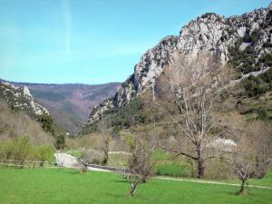 Landscapes of the Aude - Rocky escarpment, forest and meadows planted with trees