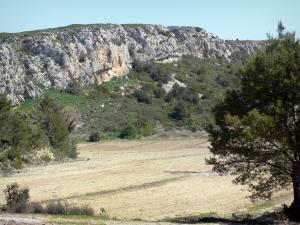 Landscapes of the Aude - Clape massif, in the Regional Natural Park of Narbonne in the Mediterranean: rocky escarpment and vegetation