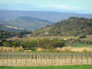 Landscapes of the Aude - Fields and hills of the Corbières