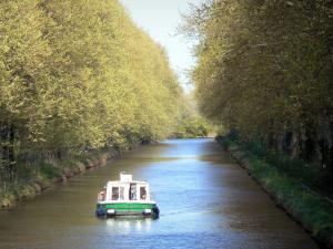 Landscapes of the Aude - Canal du Midi: boat sailing on the waterway lined with trees