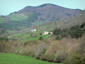 Landscapes of the Aude - Farms surrounded by meadows and forest