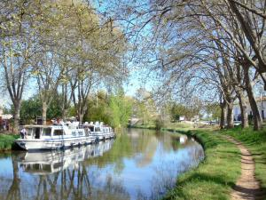 Landscapes of the Aude - Canal du Midi: shaded towpath along the waterways and moored boats
