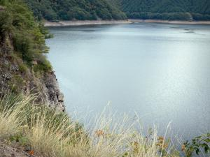 Landscapes of Aveyron - Sarrans lake and its verdant banks; in Carladez
