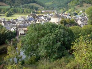 Landscapes of Aveyron - Lot valley: view of the medieval town of Sainte-Eulalie-d'Olt on River Lot, in a green setting