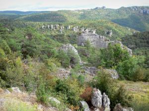 Landscapes of Aveyron - Montpellier-le-Vieux blockfield, in the Grands Causses Regional Nature Park: ruiniform dolomitic rocks in green surroundings