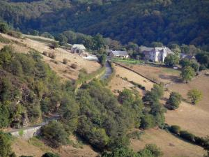 Landscapes of Aveyron - View of a small country road lined with trees and pastures