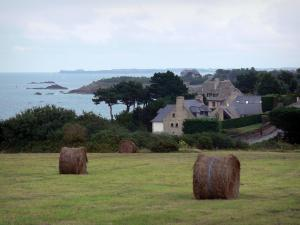 Landscapes of the Brittany coast - Emerald Coast: prairie with haystacks, houses, trees, coasts, cliffs and sea