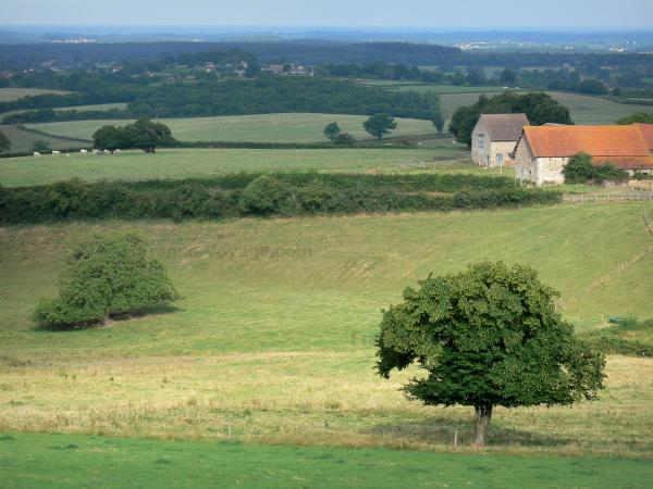 Landscapes of Burgundy - Farm surrounded by groves