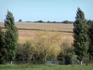 Landscapes of the Charente - Trees along the water and fields