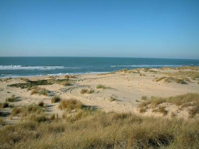 Landscapes of the Charente-Maritime coast
