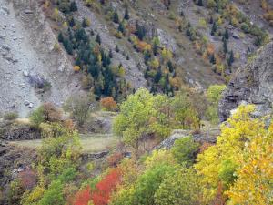 Landscapes of Dauphiné - Écrins mountains - Oisans: mountainous slopes and trees with autumn colors