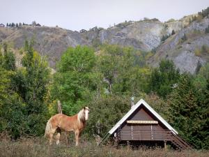 Landscapes of Dauphiné - Horses in a meadow, wooden chalets, trees and mountains